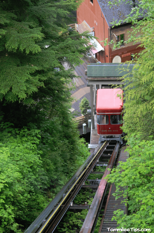 Golden-Princess-Ketchikan-Creek-Street-verniclar.png