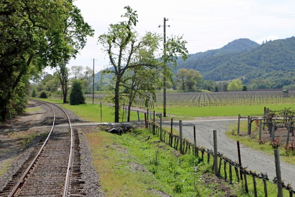 Napa Valley Wine Train through Vineyards