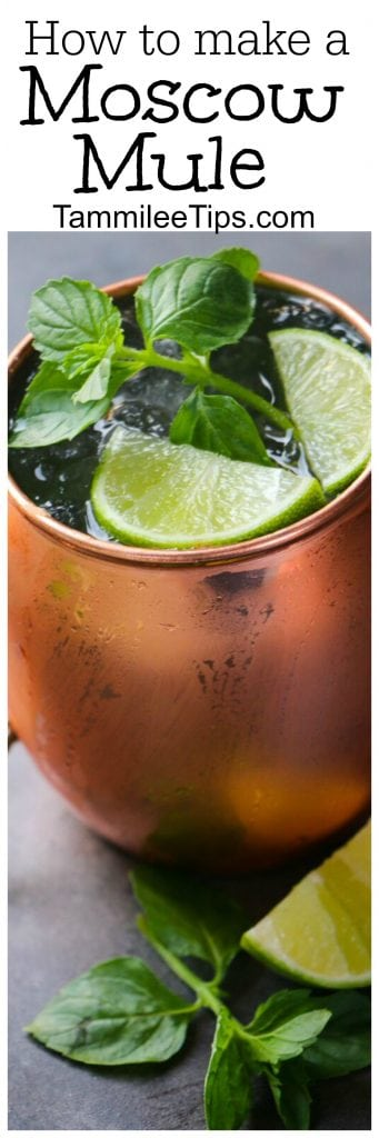 How to make the perfect Moscow Mule! This cocktail recipe is easy! Serve this classic cocktail in a copper mug and you are ready for a great party! One of the best cocktail recipes to learn!