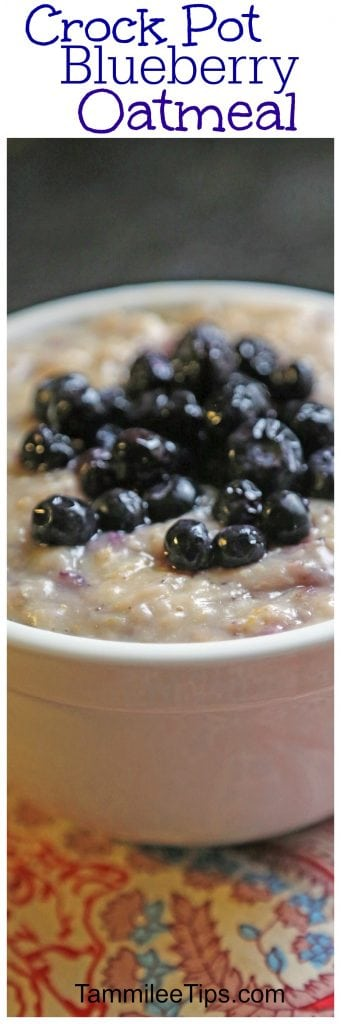 Overnight CrockPot Blueberry Oatmeal Recipe! This slow cooker breakfast recipe is super easy to make and tastes amazing! Make mornings easy with this crock pot recipe!