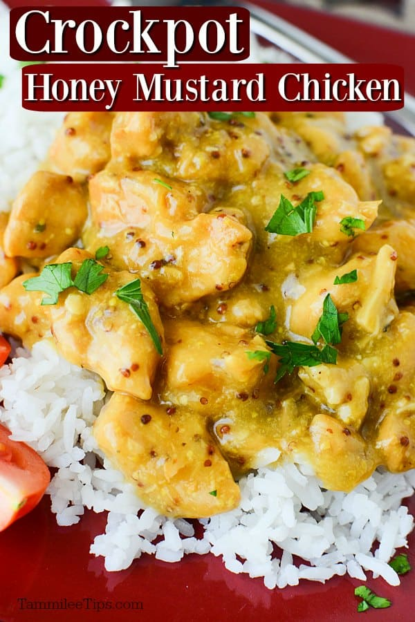 Crockpot Honey Mustard Chicken Recipe Video Tammilee Tips
