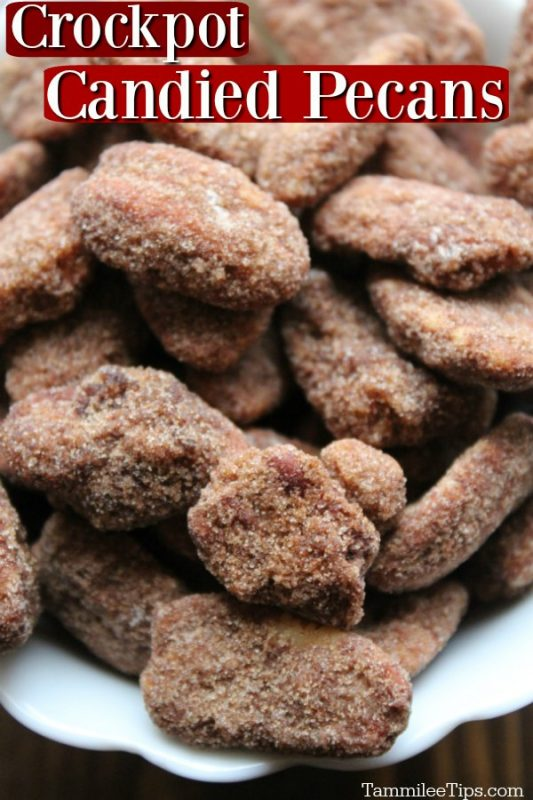 close up of crockpot candied pecans with cinnamon and sugar in a white bowl